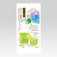 PL70658 12ヶ月のお茶頒布会 水出し緑茶 平袋